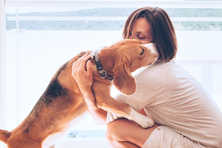 Как выстроить границы в общении со щенком?