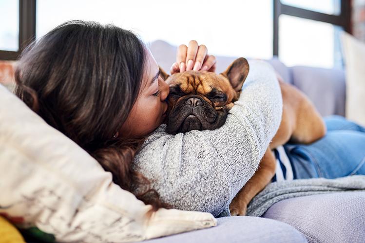 Хочу с тобой дружить! Или Жесты дружбы в мире собак