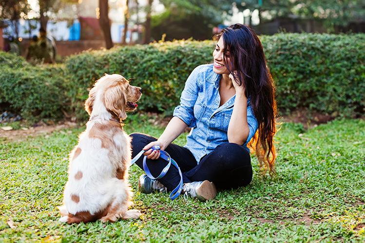 Как обучить собаку команде «Голос» и «Ползи»?