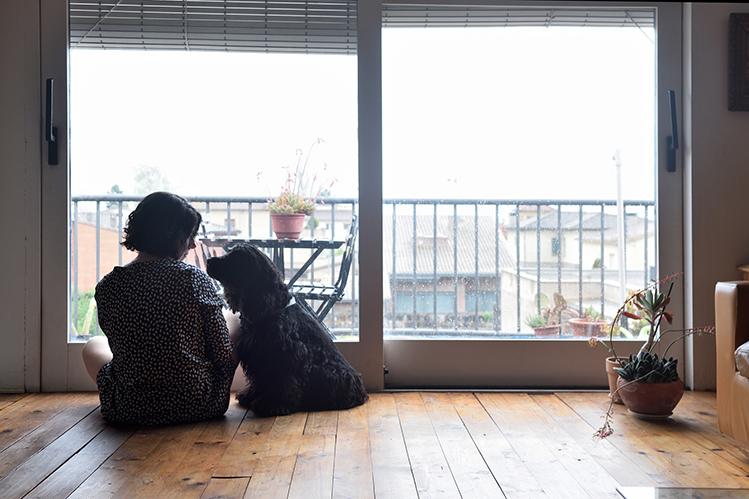 Как помочь собаке при ложной беременности?