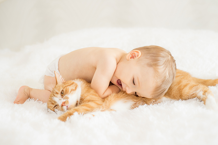 Cat and child in the same house